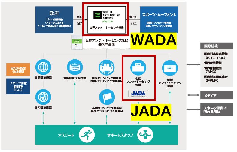 WADAとJADAの関係