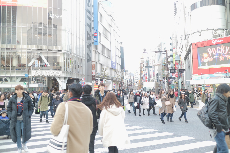 山田朱織枕研究所の東京渋谷支店の行き方