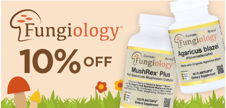 Fungiology Mushroomsセール