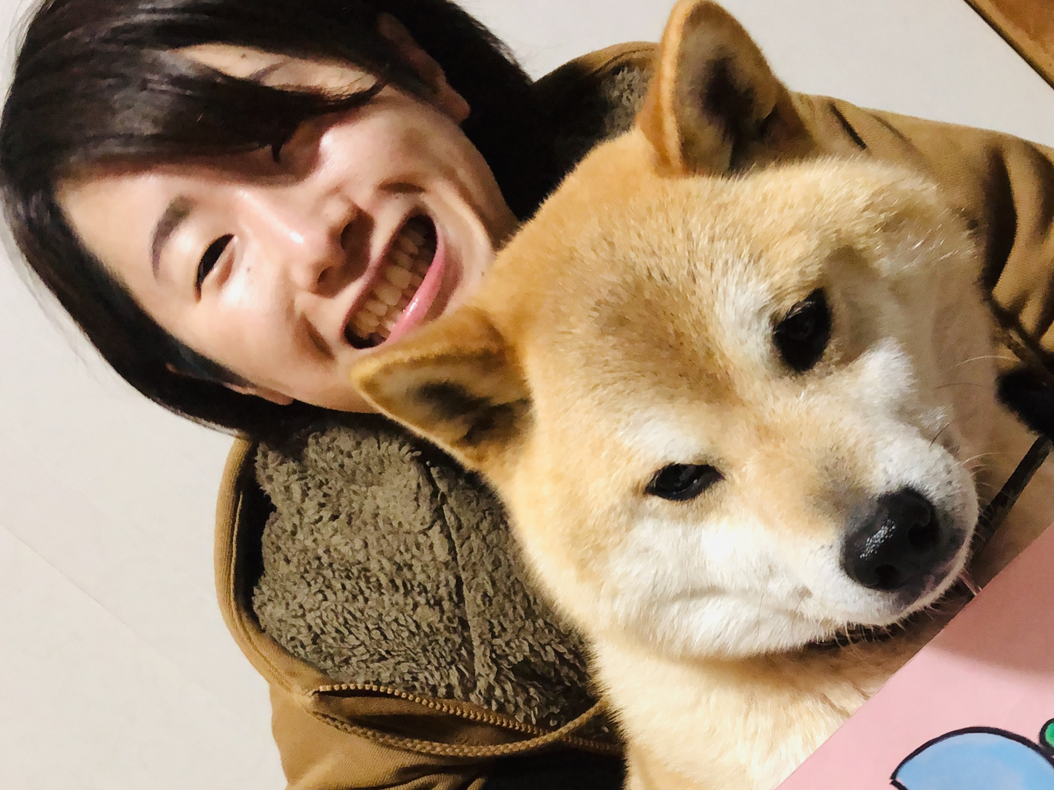 愛犬とともに