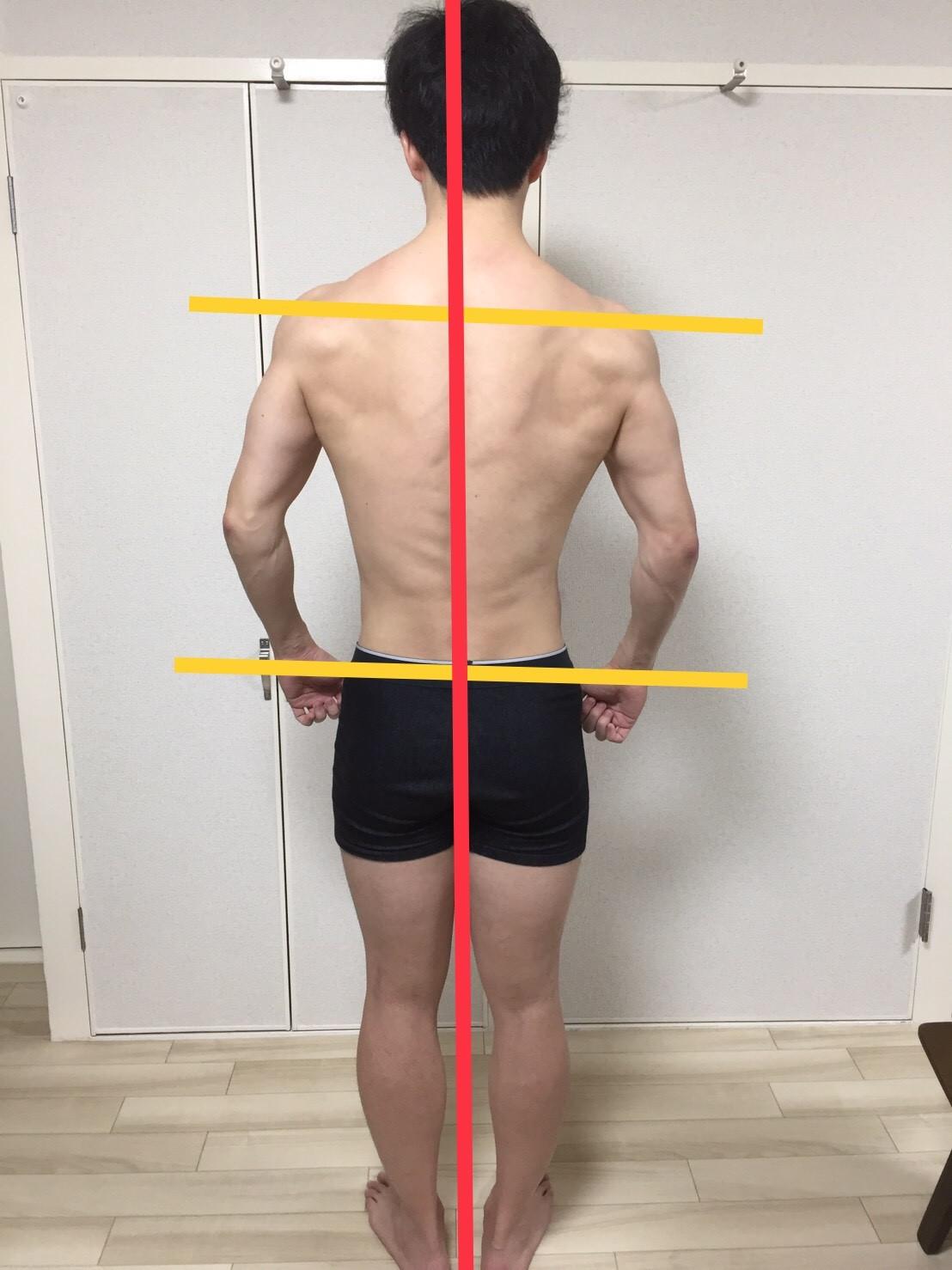 2019年3月-身体背面の写真