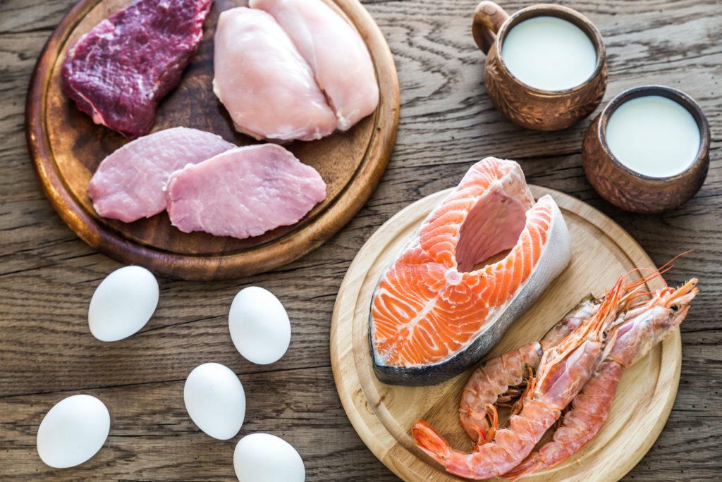 タンパク質の種類