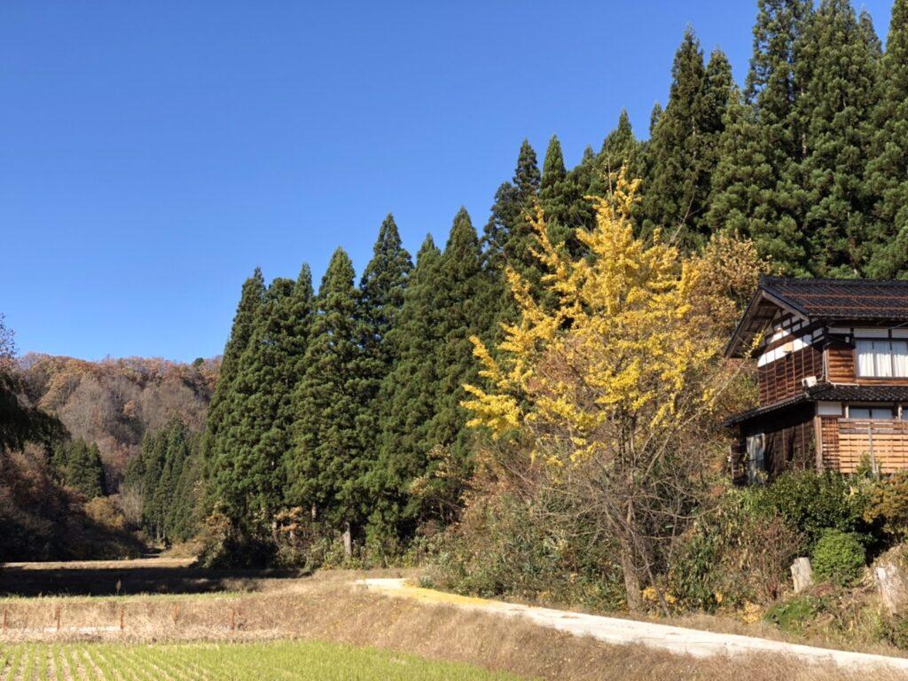 長岡への移住